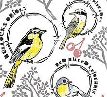 Birds & Barbed Wire by Pauline Reeves