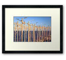 SCULPTURES BY THE SEA BONDI BEACH Framed Print
