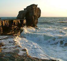 Portland,  Pulpit Rock  No.1 by coastalpix
