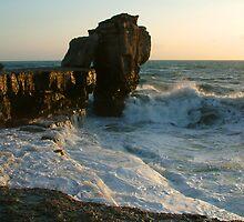 Portland,  Pulpit Rock  No.2 by coastalpix