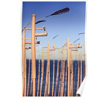 SCULPTURES BY THE SEA BONDI BEACH #3 Poster