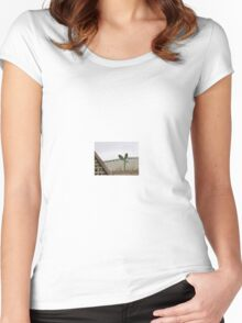Prickly rooftop! Women's Fitted Scoop T-Shirt