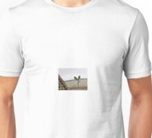 Prickly rooftop! Unisex T-Shirt