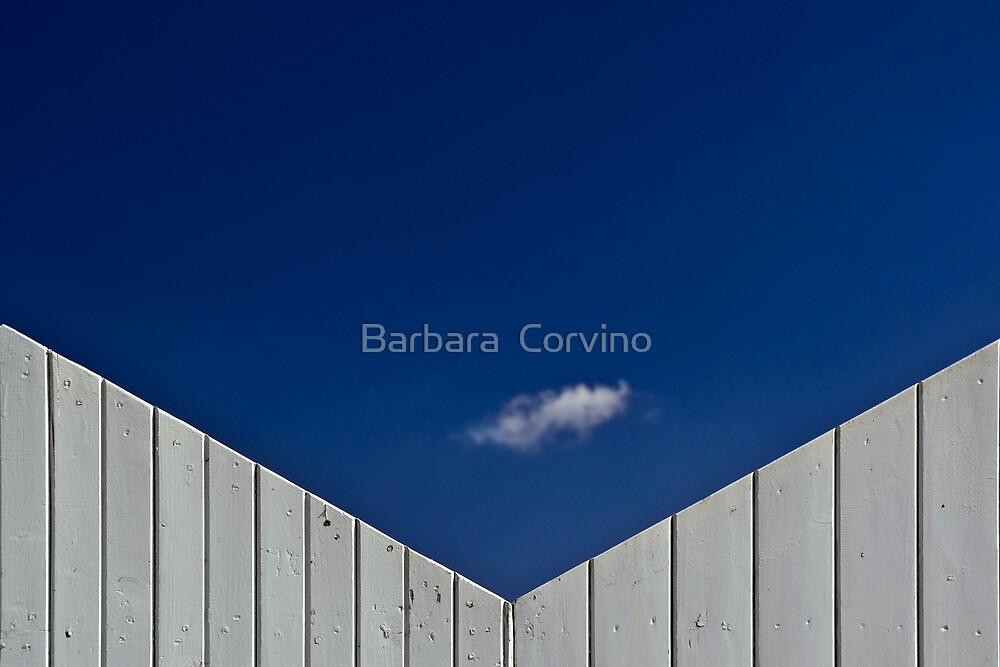 The little cloud by Barbara  Corvino