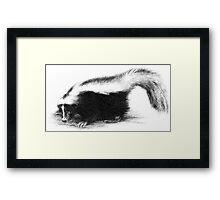 Another Skunk Framed Print