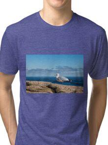 Seagull on Mountain Tri-blend T-Shirt