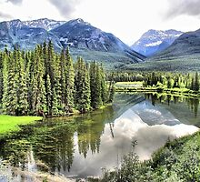 Icefields Parkway North of Banff by Vickie Emms