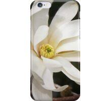 Pale Petals iPhone Case/Skin