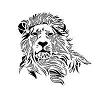 Vintage Pattern Lion Photographic Print