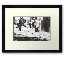 Tokyo, Tsukiji fish market - tuna showcase Framed Print