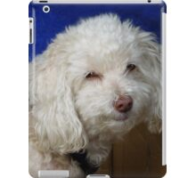 Nice Strange Little Doggy iPad Case/Skin
