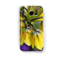 Crown imperial flower (yellow, blue, orange) Samsung Galaxy Case/Skin