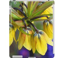 Crown imperial flower (yellow, blue, orange) iPad Case/Skin