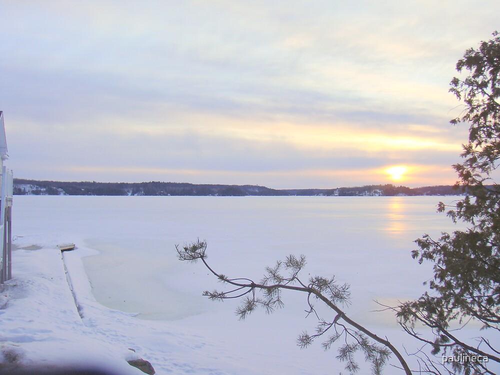 Winter III by paulineca