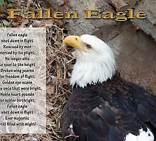 Fallen Eagle by Bonnie T.  Barry