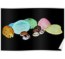 Colourful shells Poster