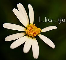 I love you _ daisy by 1001cards