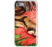 Time to Hunt iPhone Case/Skin