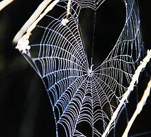 Valentine Spider by Ruth Eiseman (Schloss)