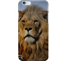 Portrait of a Majestic Proud Male African Lion with Amber Eyes iPhone Case/Skin