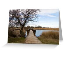 Tablas de Daimiel Greeting Card