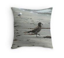 Bruny Gulls Throw Pillow