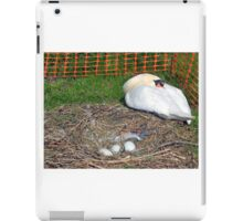 Protection for Swan and her eggs....... iPad Case/Skin