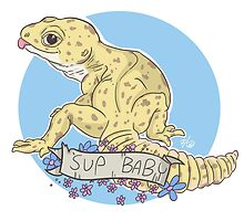 Pickup Geckos - 'Sup Baby by bkenney