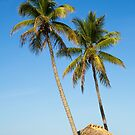 Tropical Getaway by Kenneth Keifer