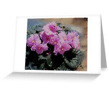 African Violet, pink flowers, impressionism, floral art Greeting Card