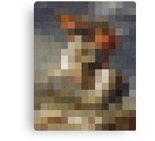 pixel naploeon Canvas Print