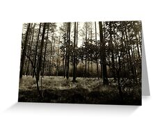 fade away into the forest dim Greeting Card
