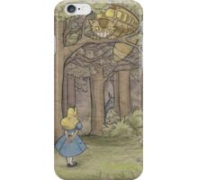 My Neighbor in Wonderland iPhone Case/Skin