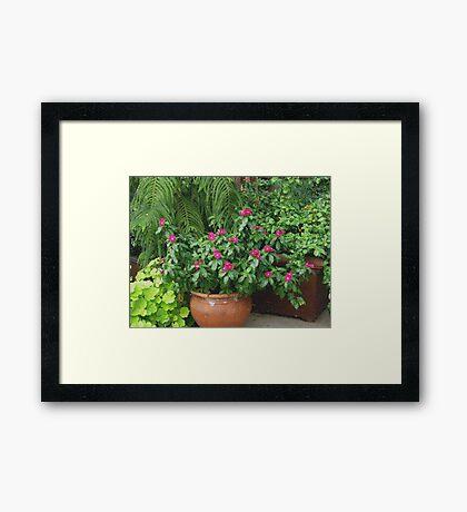 A Textured Pot Of Flowers Framed Print