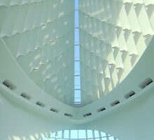 Milwaukee Art Museum III by paulineca