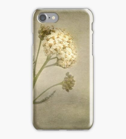 wlld herb iPhone Case/Skin