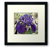 Purple Elegance Framed Print