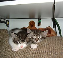 Two sleepers by memaggie