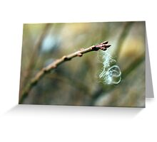 Entangled Greeting Card