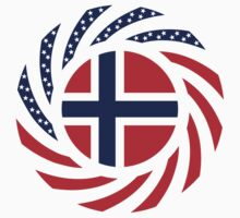 Norwegian American Multinational Patriot Flag Series by Carbon-Fibre Media