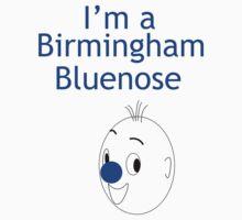 Birmingham Bluenose by Michael Birchmore
