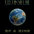 ONE OF A KIND by shadowlea