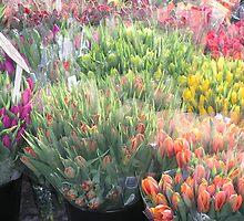 Street Bouquets In Copenhagen by gayle hoskins-nestor