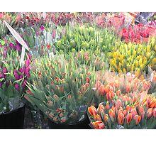 Street Bouquets In Copenhagen Photographic Print