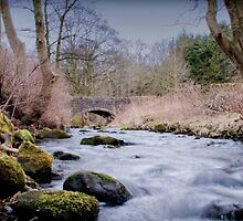 River Kinder by William Davies