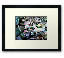 Shell Nacre Framed Print