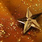Starry glitter by Sheri Nye