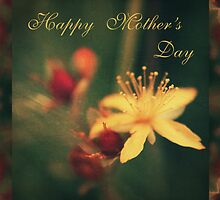 happy mother's day _floral 01 by 1001cards
