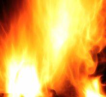 Braai Fire by Nicolas Raymond