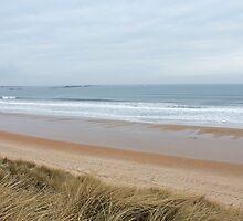 Northumberland Beach  by nathanw08